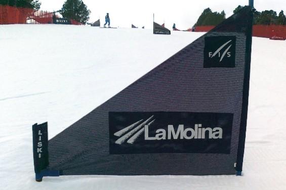 Liski snowboard Giant slalom panels