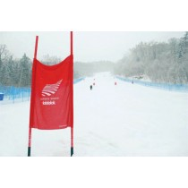 Liski downhill panel (75X100cm) -  FIS competition