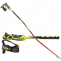 633_6776 leki palice worldcup racing gs tbs