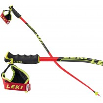 Leki SuperG and Downhill ski pole, 2019